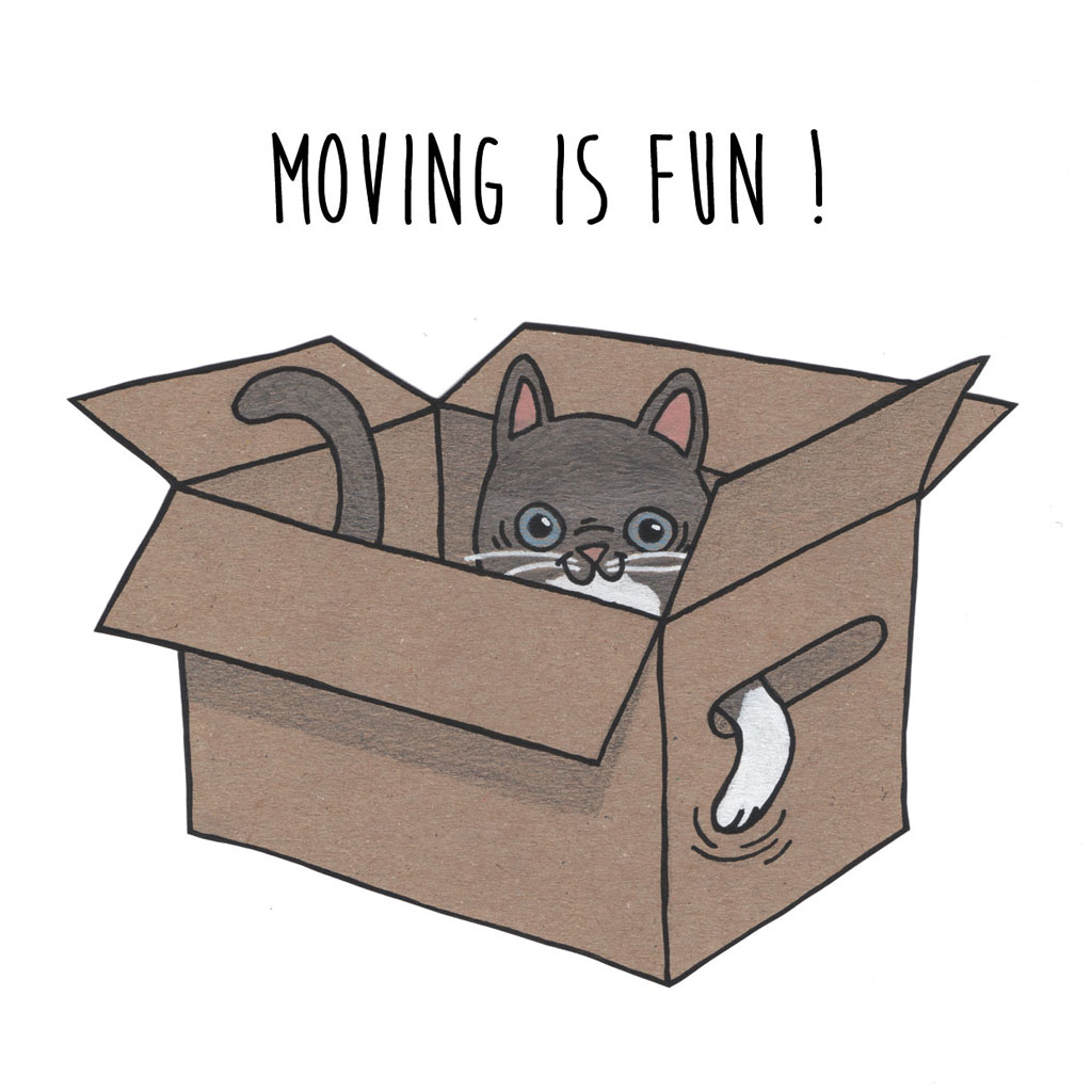 moving-is-fun